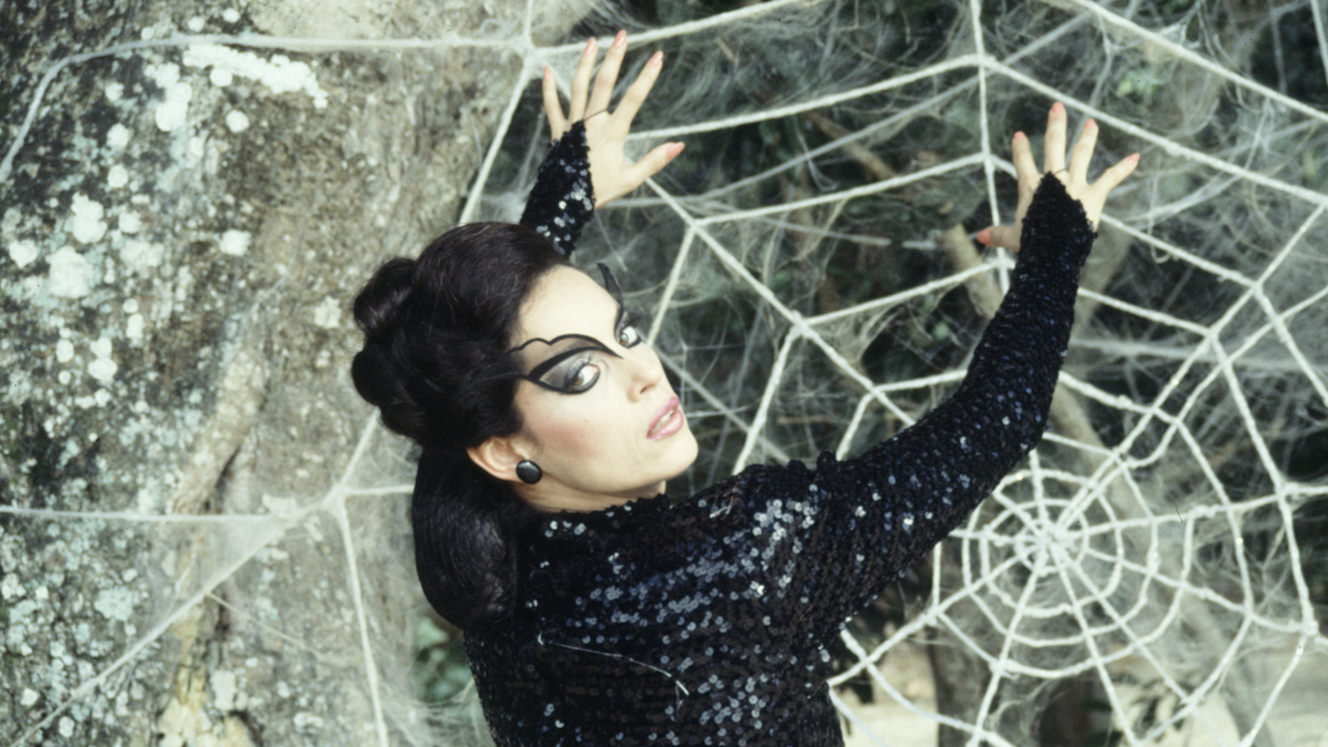 kiss of the spider woman essay Kiss of the spider woman essaysin analyzing the film kiss of the spider woman by hector babenco, the first thing i noticed was how the two cellmates in south america, molina and valentin were two very different people in fact, perfect opposites.