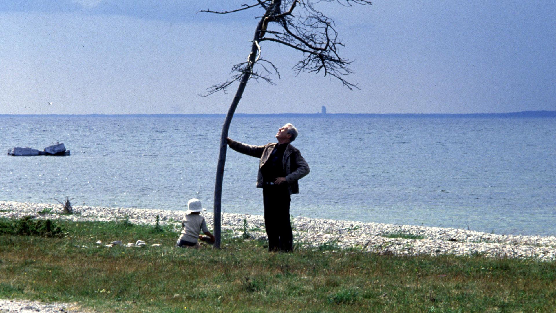「the sacrifice andrei tarkovsky」的圖片搜尋結果